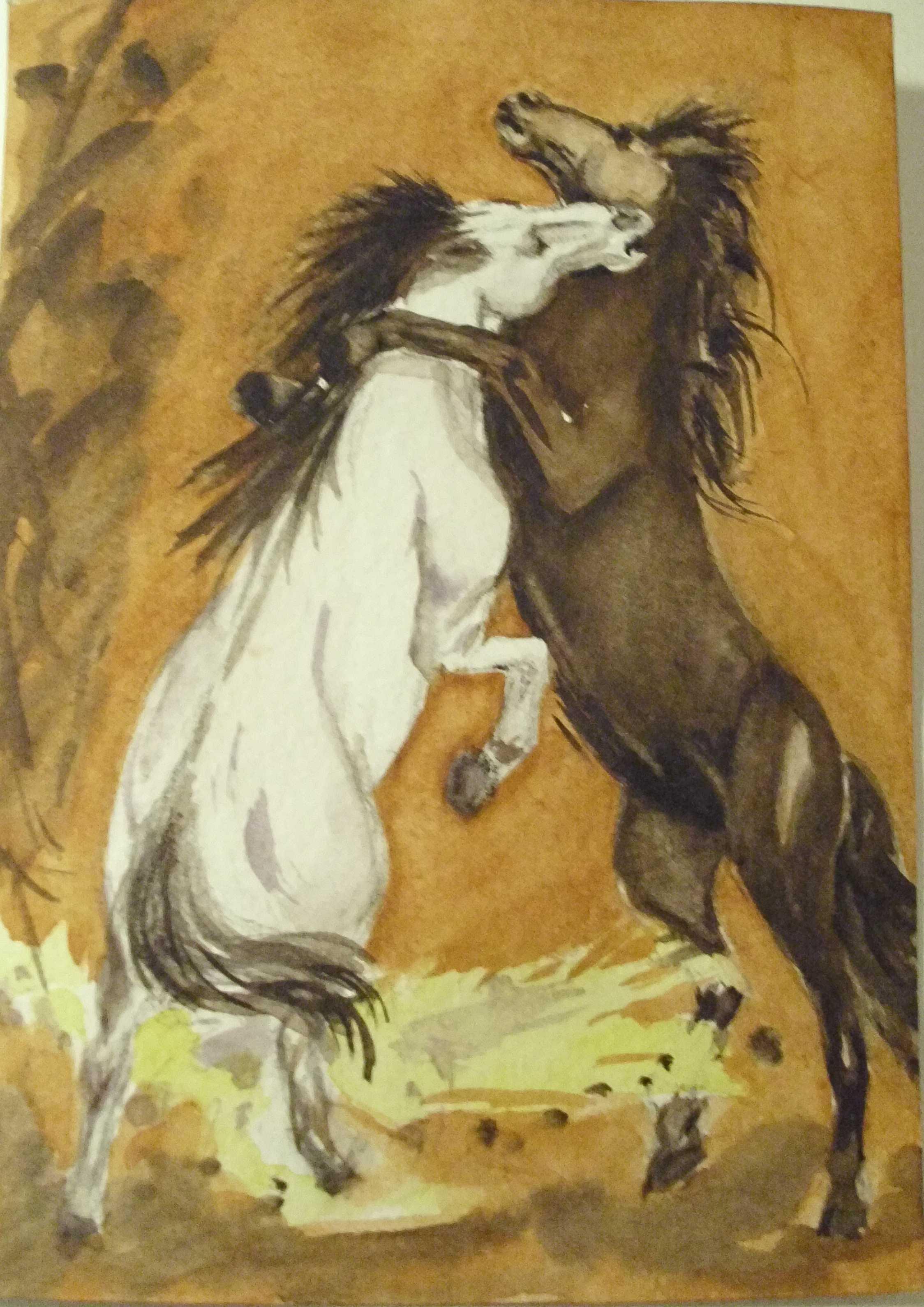 Pferde besser 002-2