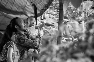 Thailand_2015-8